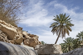 Omani Stock Photo of Wadi Oman Nature