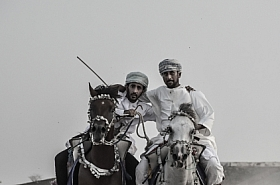 Omani Stock Photo of Horse Racing, Animal, Wildlife